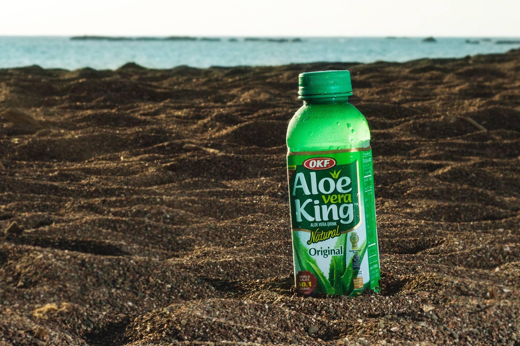 Aloe Vera King am Meer